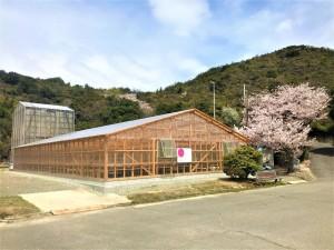 SOLASHIO建屋